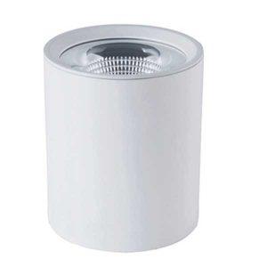Đèn ốp trần 30W mẫu B (tròn)